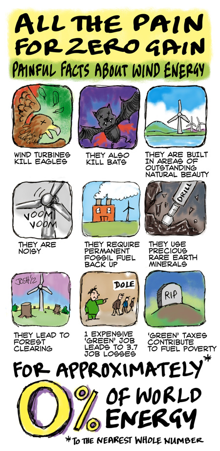 Les éoliennes, catastrophes écologiques