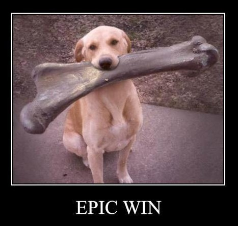 epic win