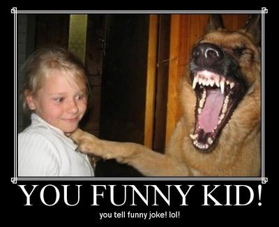 lol dog