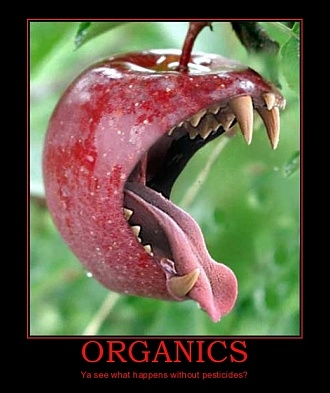 organic food without pesticides