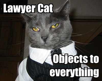 lawyer lolcat