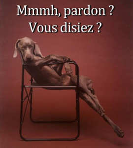 pardon vous disiez - lofty dog is lofty