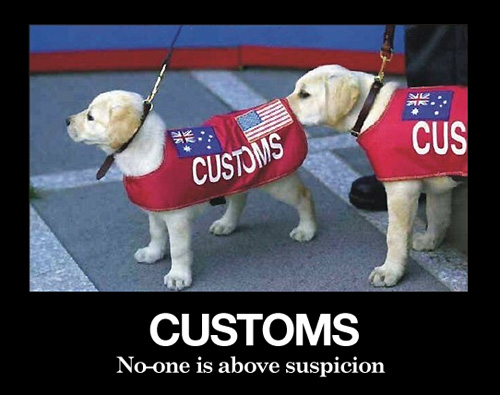 customs no one is above suspicion
