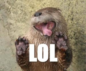 the lol beaver