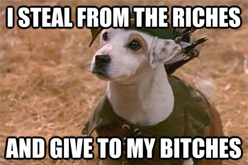 steal from riches give to bitches