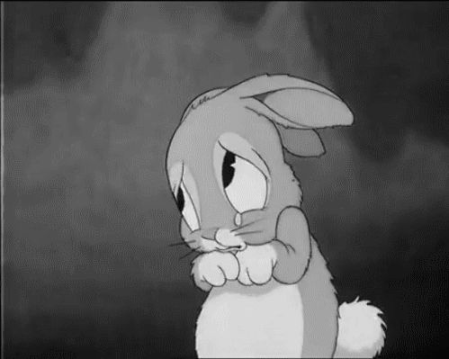 gifa sad rabbit