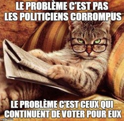 cat - probleme pas politiciens corrompus mais ceux qui votent pour eux