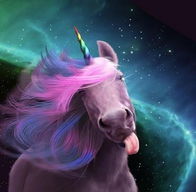 sassy unicorn