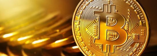 quante persone proprio bitcoin