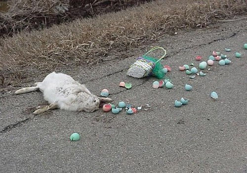 Oh noes, they killed easter bunny