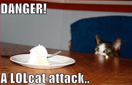lolcat attack