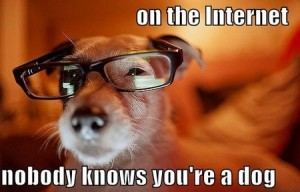 on the internet nobody knows youre a dog