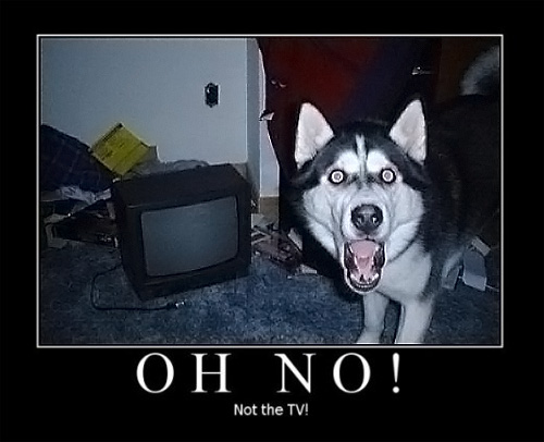 oh no, not the TV !