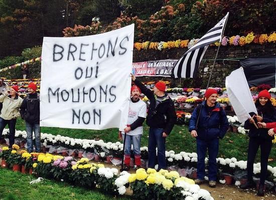 bonnets rouges - bretons oui moutons non