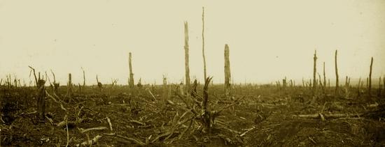 paysage dévasté